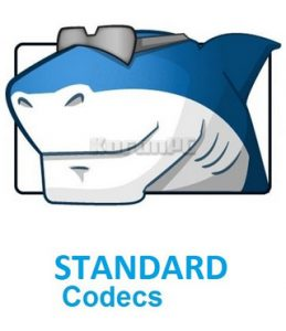 STANDARD Codecs for Windows 10, Windows 8.1 and Windows 7