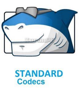 STANDARD Codecs 6.7.5 Crack For Windows 7/8/10